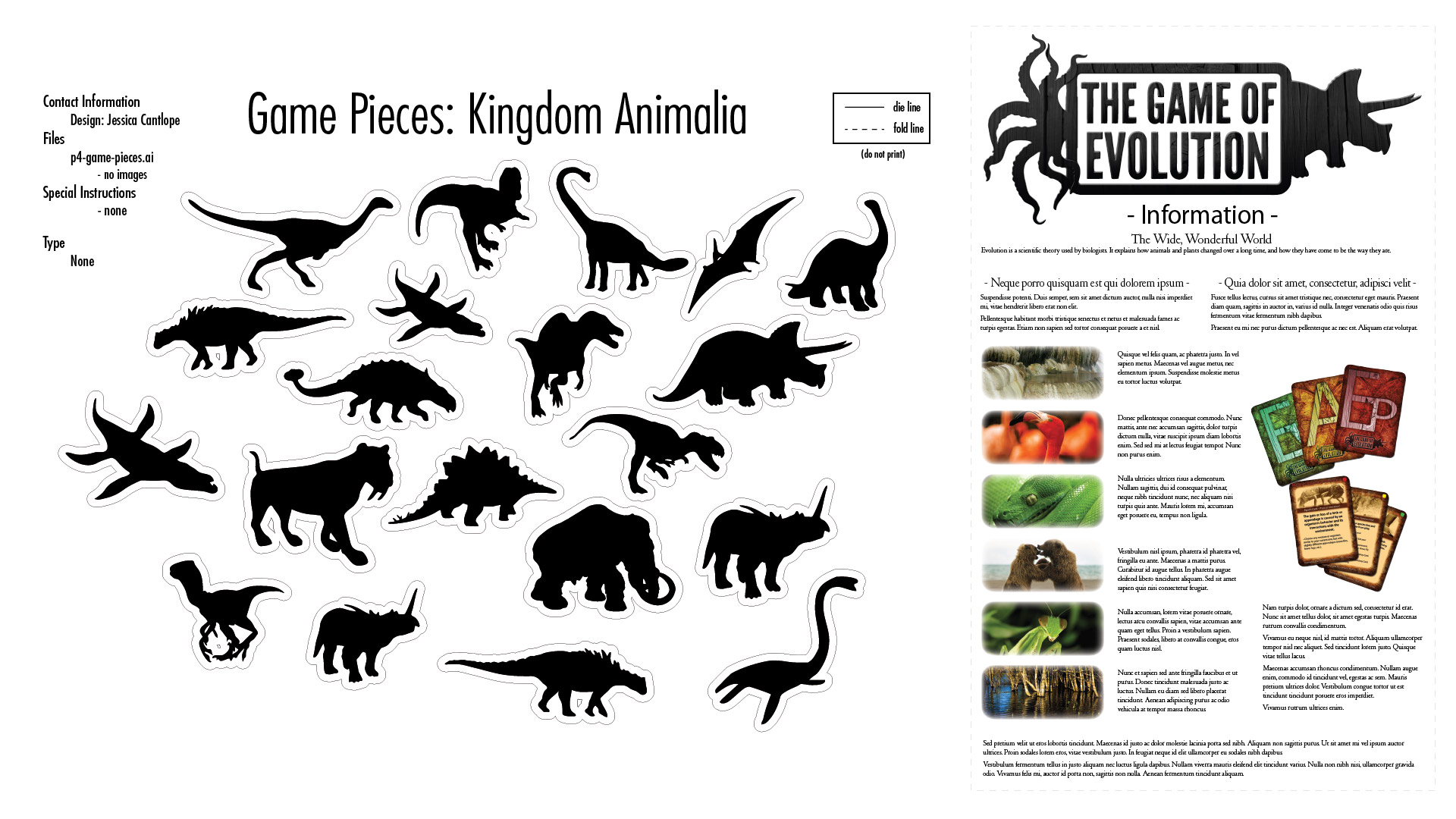 The Game of Evolution Game Pieces Samples and Instruction Sheet